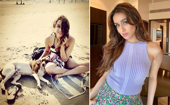 5 Times Shraddha Kapoor's Love For Animals Melted Our Hearts, Check Out!