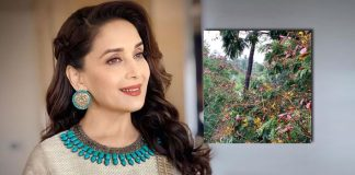 Madhuri Dixit shares a portrait of 'calm before the storm'