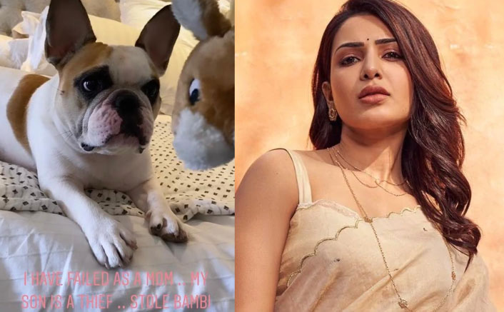 Here's Why Samantha Akkineni Feels She Has Failed As A Mom To Her Puppy