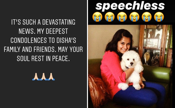 Sushant Singh Rajput Devastated With Ex-Manger Disha Salian's Demise, Varun Sharma, Bharti Singh & Others Pay Tribute