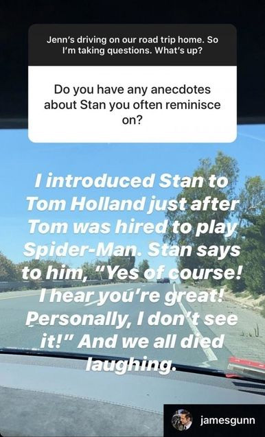 WHAT! Stan Lee Didn't Like James Gunn's Decision Of Casting Tom Holland As Spider-Man
