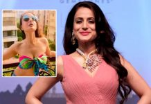 Ameesha Patel has a 'hot' wish
