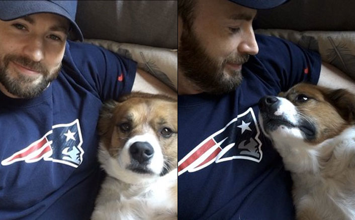 Chris Evans Asks Pet Dodger If He's Ready For Hip Surgery & The Doggo's Reaction Is Adorable, WATCH
