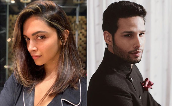 Deepika Padukone's Co-Star Siddhant Chaturvedi Has Great Things To Say About Her, Check Out!