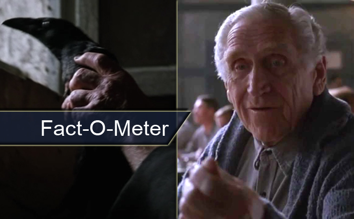 Fact-O-Meter: The Team Of The Shawshank Redemption Had To Search For Naturally Died Maggot For THIS Reason