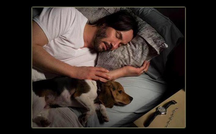 John Wick: Wondering Where Keanu Reeves' Adorable Furry Co-Star 'Daisy' The Beagle Is? Find Out!