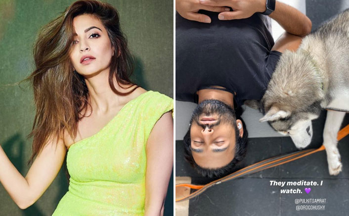 Kriti Kharbanda Watches As Boyfriend Pulkit Samrat & Pet Dog 'Meditate'
