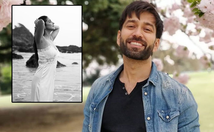 Nakuul Mehta & Harleen Sethi's Chat On Her Instagram Post Is Unmissable