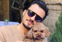 Orlando Bloom Is Broken As His Pet Mighty Goes Missing, Seeks Help From Fans To Find His Canine Friend