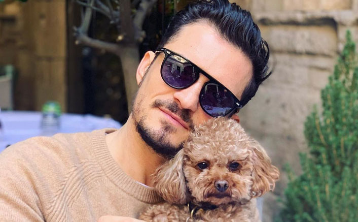 Orlando Bloom Is Broken As His Pet Dog Mighty Goes Missing, Seeks Help From Fans To Find Him