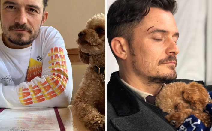 Orlando Bloom Says Being Unable To Find And Protect His Dog Mighty 'Is A Waking Nightmare'