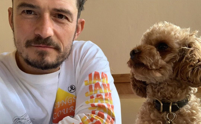 Orlando Bloom's Dog Mighty Has Passed Away; Actor Gets A Tribute Tattoo