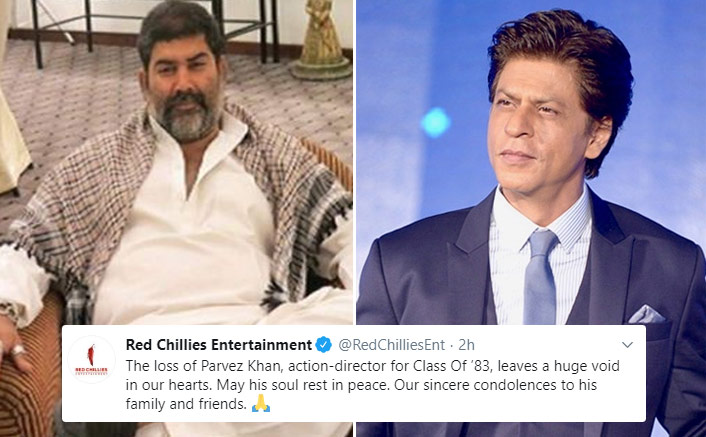 Parvez Khan Demise: Shah Rukh Khan's Red Chillies Entertainment Pays Tribute To Class Of '83's Action Director