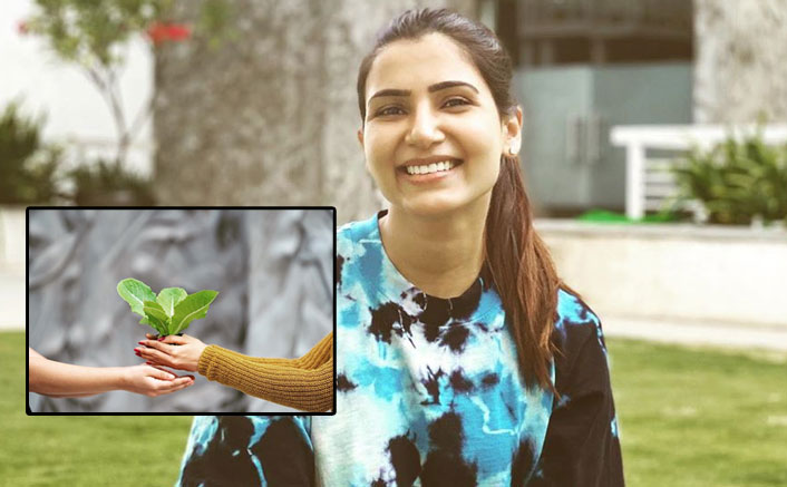 """Samantha Akkineni Urges Fans To Be 'Gangsta Gardeners': """"Planting A Seed Can Bring Change"""""""