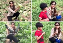 Shilpa Shetty: Have accepted vegetarianism completely