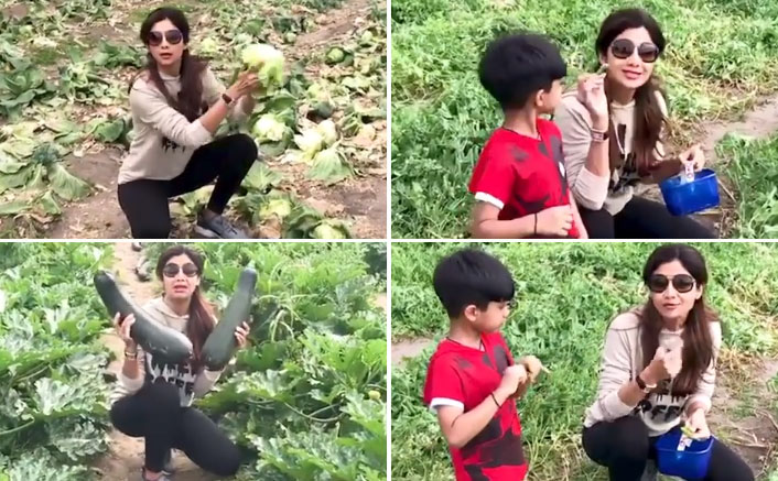 "Shilpa Shetty On Finally Accepting Vegetarianism Completely: ""I Wanted To Reduce My Carbon Footprint In The Environment"""