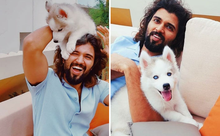 Vijay Deverakonda Introduces Storm Deverakonda To His Fans & Who's Stealing The Charm Now?
