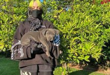 Billie Eilish's Dog Is The OG 'Bad Guy' As He Poops On Her 6.7 Lacs of Sneakers Collection