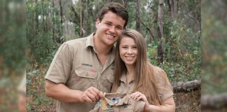 Bindi Irwin & Chandler Powell's Pregnancy Announcement Is Super Cute, Check It Out!