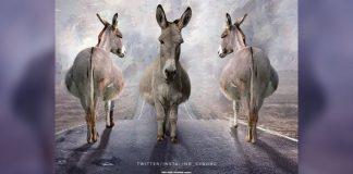 Poster parodying 'Sadak 2' goes viral