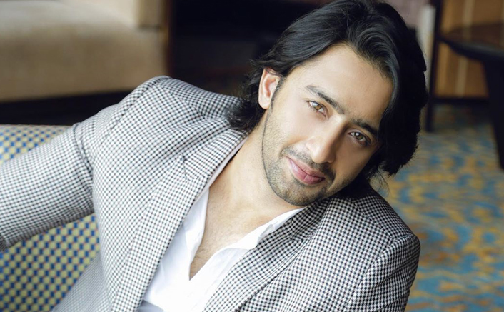 Shaheer Sheikh Always Wanted To Become A Good Son While Growing Up