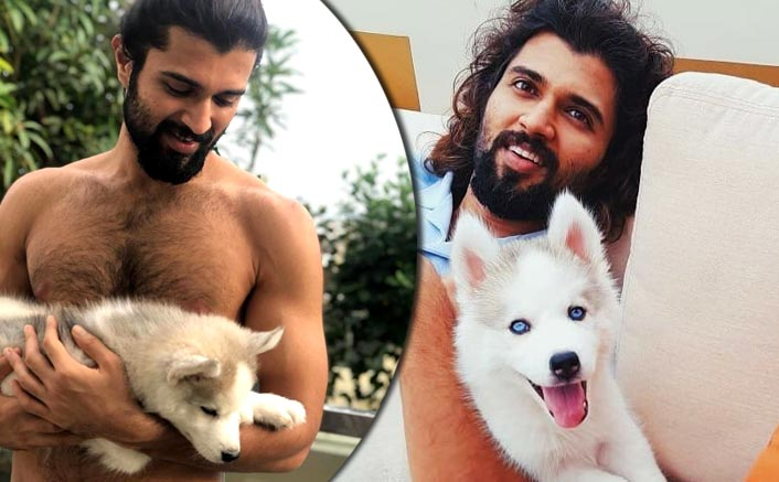 Vijay Deverakonda's Shirtless Picture With His 'Cute Beast' Will Surely Make Your Day!
