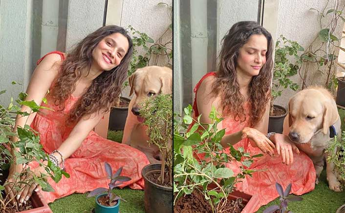 Ankita Lokhande Plants Trees In Memory Of Sushant Singh Rajput With Her Partner Hatchi!