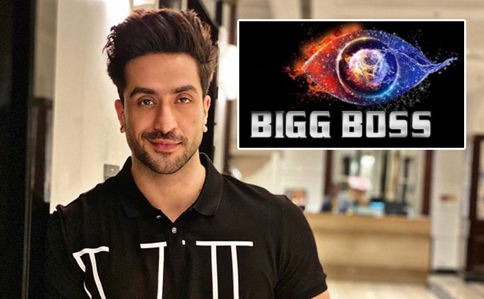 Bigg Boss 14: Aly Goni Confirms NOT Participating In The Salman Khan Show!
