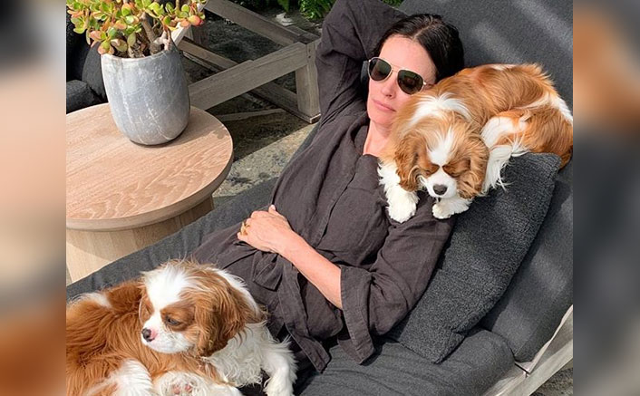 FRIENDS' Courteney Cox's Bond With Her Pet Dogs Is Exactly How She Had With Rachel & Chandler - Celebrity Pals!(Pic credit: Instagram/courteneycoxofficial)