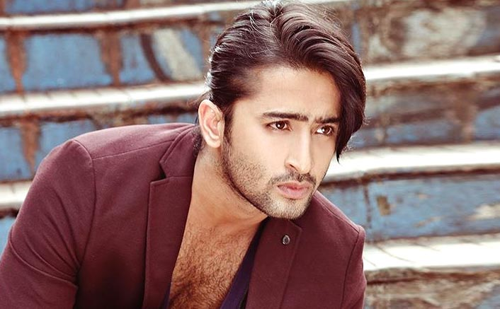 Shaheer Sheikh To Get Married Soon? Deets Inside