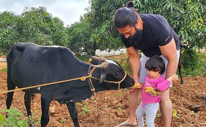 K.G.F Star Yash Bonds With Daughter At Their Farmhouse Amid Lockdown, Wife Radhika Pandit Shares A Glimpse