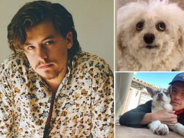 Riverdale Actor Cole Sprouse Befriends Dogs, Cows & Wants A Pet Frog - Celebrity Pals!