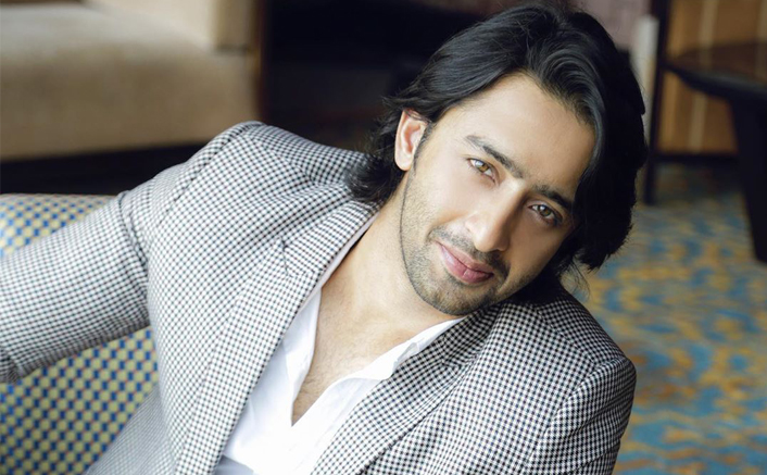 """Shaheer Sheik On The Current Track Of YRHPK: """"It Is A Very Noble Thing To Adopt A Child"""""""