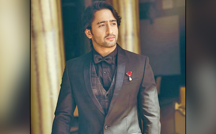 Shaheer Sheikh's Net Worth & The Amount He Charges For A Single Day Shoot Is Too Good!