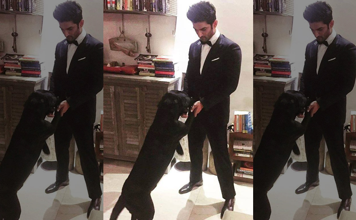 Sushant Singh Rajput Sent Money For His Dogs' Expenses Before His Death!