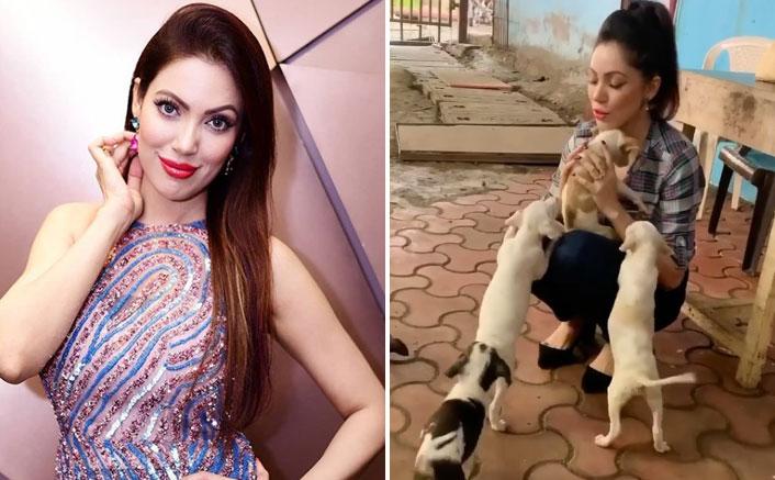 Taarak Mehta Ka Oolta Chashmah Fame Mun Mun Dutta Enjoys A 'Pawfect' Playtime