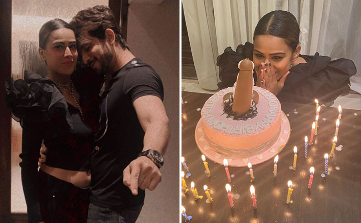 Nia Sharma Gets A P*nis Cake On Her Birthday; Arjun Bijlani & Friends ROCK The Party