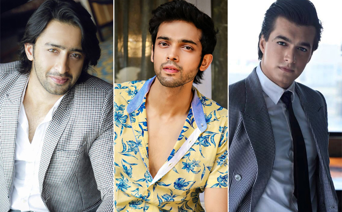 Vivian, Arjun, Shivin, Shashank, Sharad, Nishant, Vijyendra make it to the prestigious Most Desirable Men list on Television!