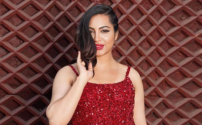"Bigg Boss 11's Arshi Khan: ""S*x Education Is Need Of The Hour, Will Definitely Give It To My Children"""