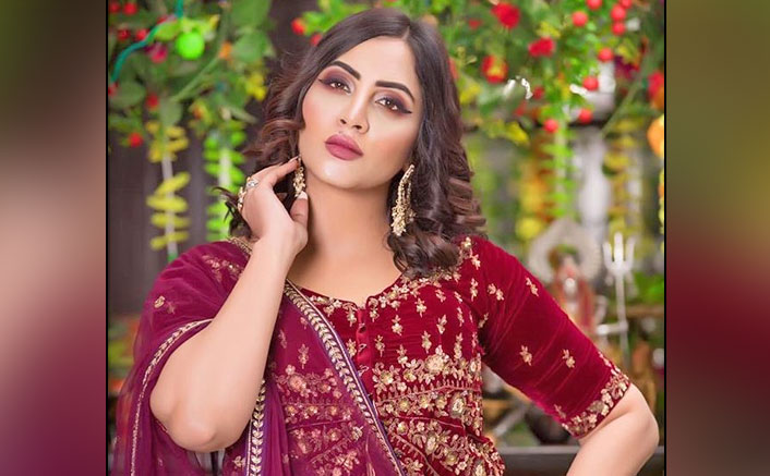 Bigg Boss 11's Arshi Khan To Play A S*xpert In Her Upcoming Web Show