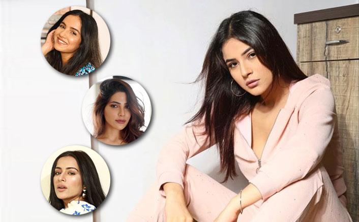 Bigg Boss 14: Fans Call Female Contestants 'Shehnaaz Gill Ki Copy', See REACTIONS! (Pic credit: Instagram/jasminbhasin2806, shehnaazgill, nikki_tamboli, saragurpals)