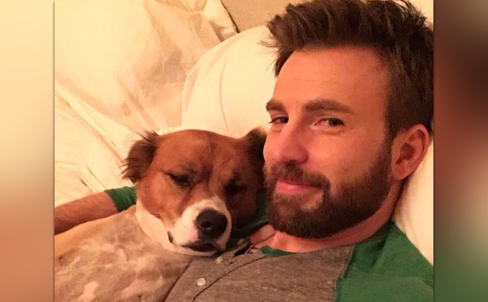 Chris Evans' Love Note For His Pet Dodger Is Every Dog Lover!