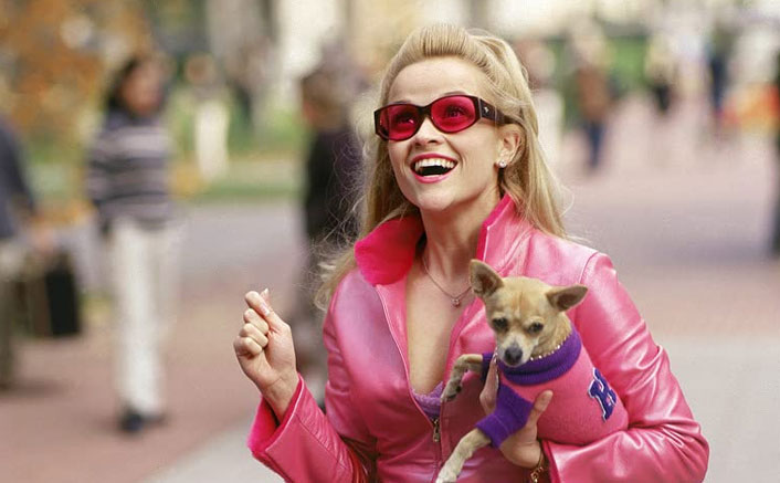 Legally Blonde 3: Reese Witherspoon Finally Gets A Release Date!