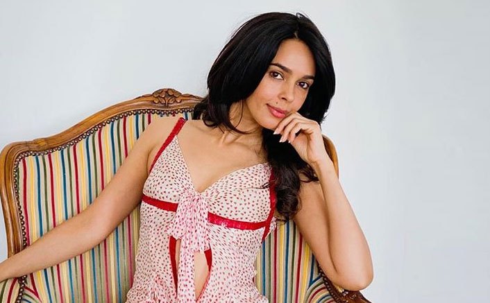 """Mallika Sherawat Questions Troll Blaming Her Movies For Instigating R*pe: """"So My Movies Are An Invitation..."""""""