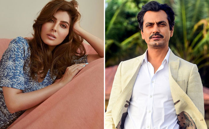 NAWAZUDDIN SIDDIQUI AND ELNAAZ NOROUZI TO BE PAIRED ONCE AGAIN TOGETHER FOR SANGEEN