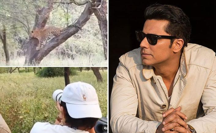 Randeep Hooda Fulfills Long-Cherished Dream Of Sighting A Leopard In The Wild