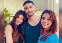 Shehnaaz Gill, Arjun Kanungo unveil unplugged cover of 'Dil diyan gallan'