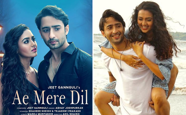 Shaheer Sheikh & Tejasswi Prakash Have EXACT Same Thing To Say About Working With Each Other In 'Ae Mere Dil'