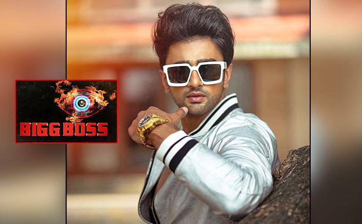 Bigg Boss 14: Nishant Singh Malkani Calls Jaan Kumar Sanu 'Extremely Stupid' & 'Untrustworthy'