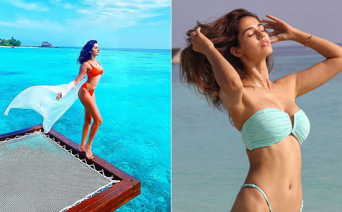 Disha Patani or Tara Sutaria - Choose Your Favourite Bikini Babe?